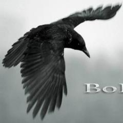 BoPoH